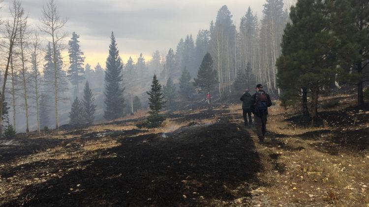 På plats i område där planerad bränning utfördes.