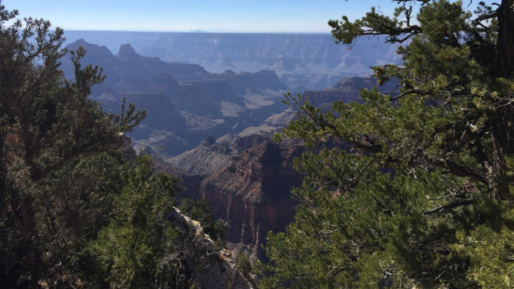 Grand Canyon National Park, North Rim.