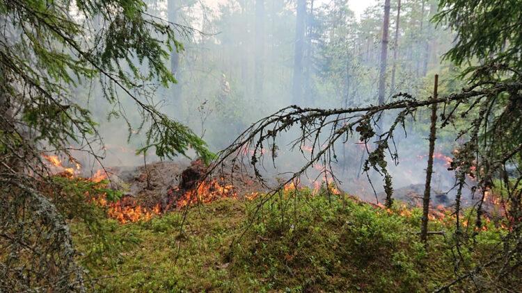 En man med gula klader syns genom rök. Låga lågor brinner i förgrunden.