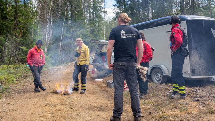 Fem personer tittar på en lite eld som brinner på en skogsväg.