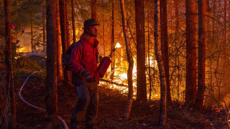 En man i röd skjorta och skägg går längs eldlinje som lyser upp honom i mörkret.