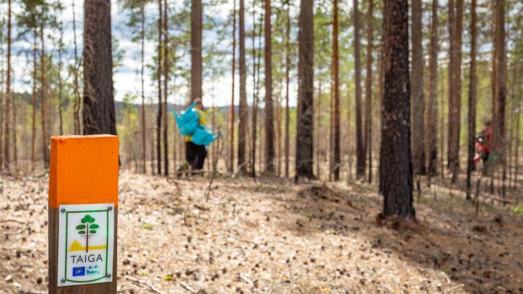 Stolpe med orange topp och lite vit skylt med texten Taiga. I bakgrunden går en persone som bär på flera turkosa vattenkannor.