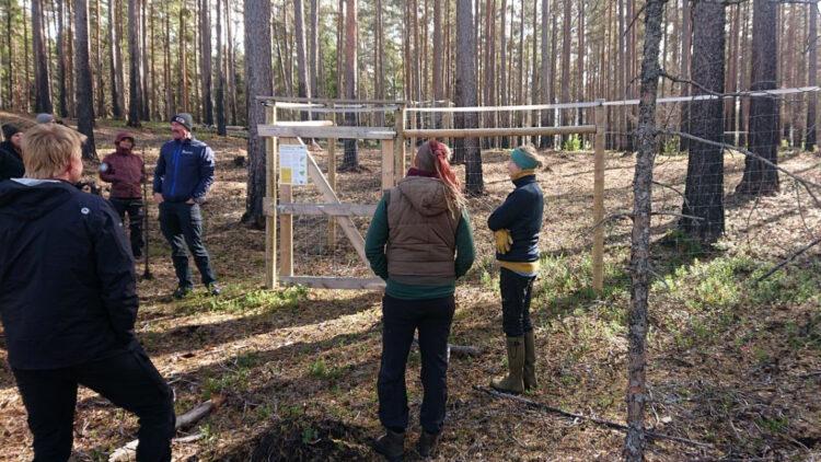 Fem personer står vid ett manshögt stängsel mitt ute i skogen. På stängslet hänger en skylt.